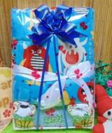 FREE KARTU UCAPAN Kado Lahiran Paket Kado Bayi Baby Gift Box Selimut Carter Plus Baby Sock Biru Ganteng 75 terdiri dari selimut carter extra lembut,handuk kecil,kaos kaki boneka baby
