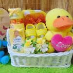 TERLARIS EKSKLUSIF paket kado bayi perempuan baby girl gift parcel bayi parcel kado bayi kado lahiran Keranjang sepatu Spesial