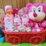 TERLARIS EKSKLUSIF paket kado bayi perempuan baby girl gift parcel bayi parcel kado bayi kado lahiran Kereta Spesial Pink