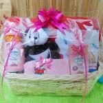 TERLARIS EKSKLUSIF paket kado bayi baby gift parcel bayi parcel kado bayi kado lahiran kereta spesial selimut beludru