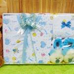 FREE KARTU UCAPAN Kado Lahiran Paket Kado Bayi Newborn Baby Gift Box Full Package Prewalker Doll Aneka Warna